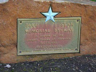 Blue Star Marker